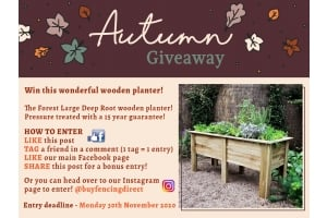Forest Large deep root wooden planter giveaway