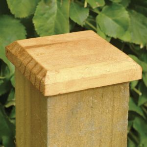 Forest Fence Post Cap 10 x 10cm
