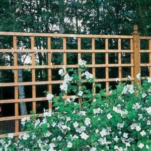 Forest Arley Trellis 122 x 183cm (Heavy Duty)