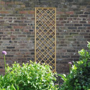 Forest Henley Lattice 180 x 60cm (Hidcote)