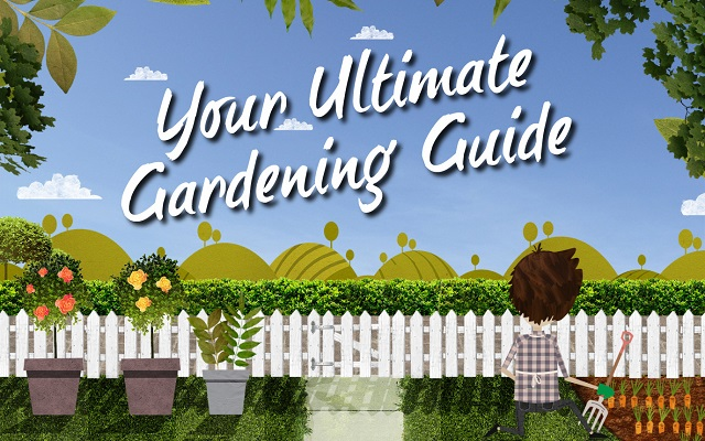 Your ultimate guide to gardening: Infographic