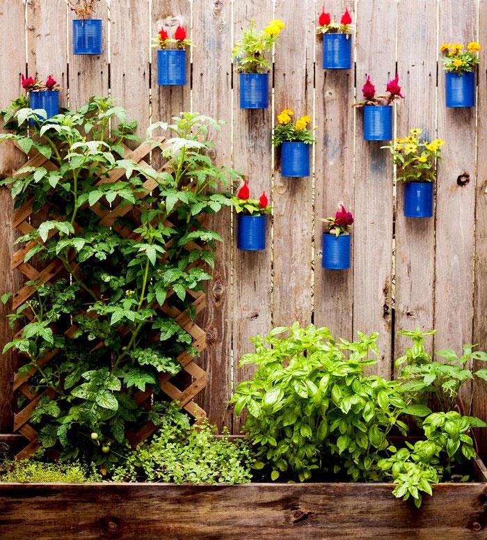 Creative Fencing Ideas for Your Garden