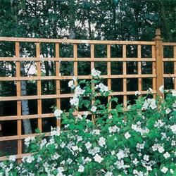 garden trellis panel