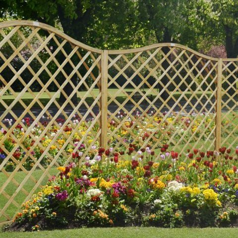 How to Use Garden Trellis