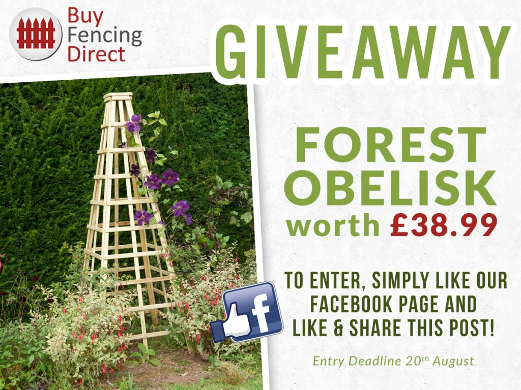 Forest Obelisk Summer Giveaway
