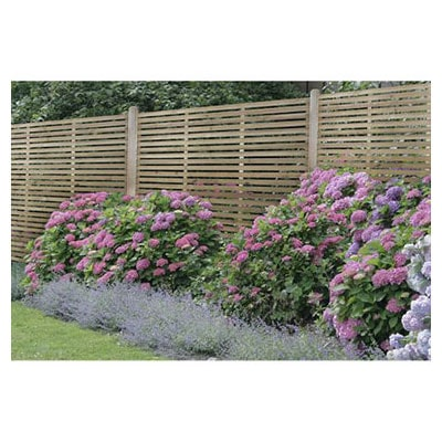 Forest 6x6 Slatted Fence Panel - A slatted decorative garden fence panel behind pink flowers